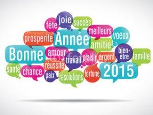 Bonne année 2015_blogue